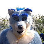 Bluewolf's Fursona Avatar