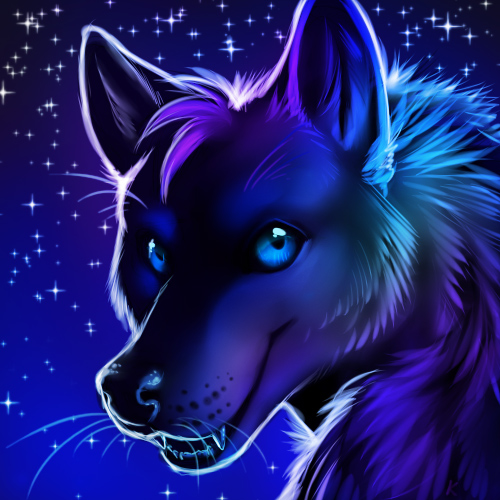 Night Wolf's Fursona Avatar