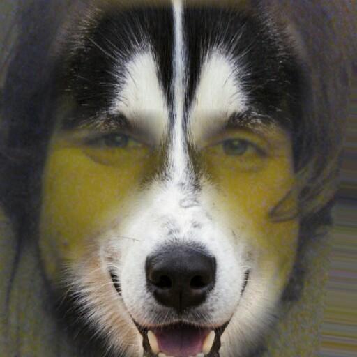 Vajra Wolf's Fursona Avatar