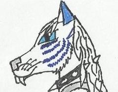 Silver's Fursona Avatar