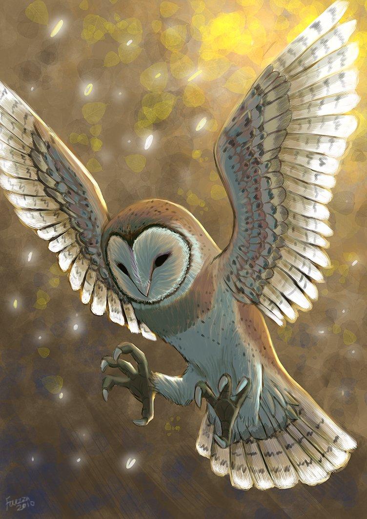 Mr.Owl's Fursona Avatar