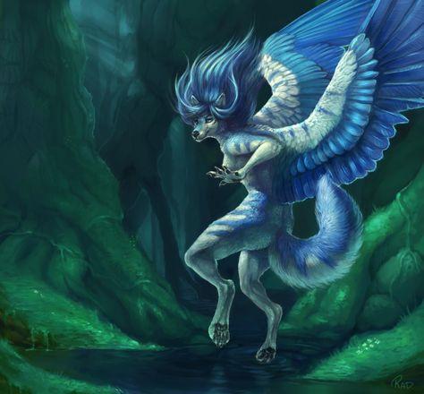 Rain Frostwing's Fursona Avatar