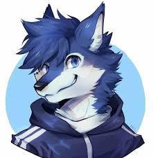 Jax Wolfie's Fursona Avatar