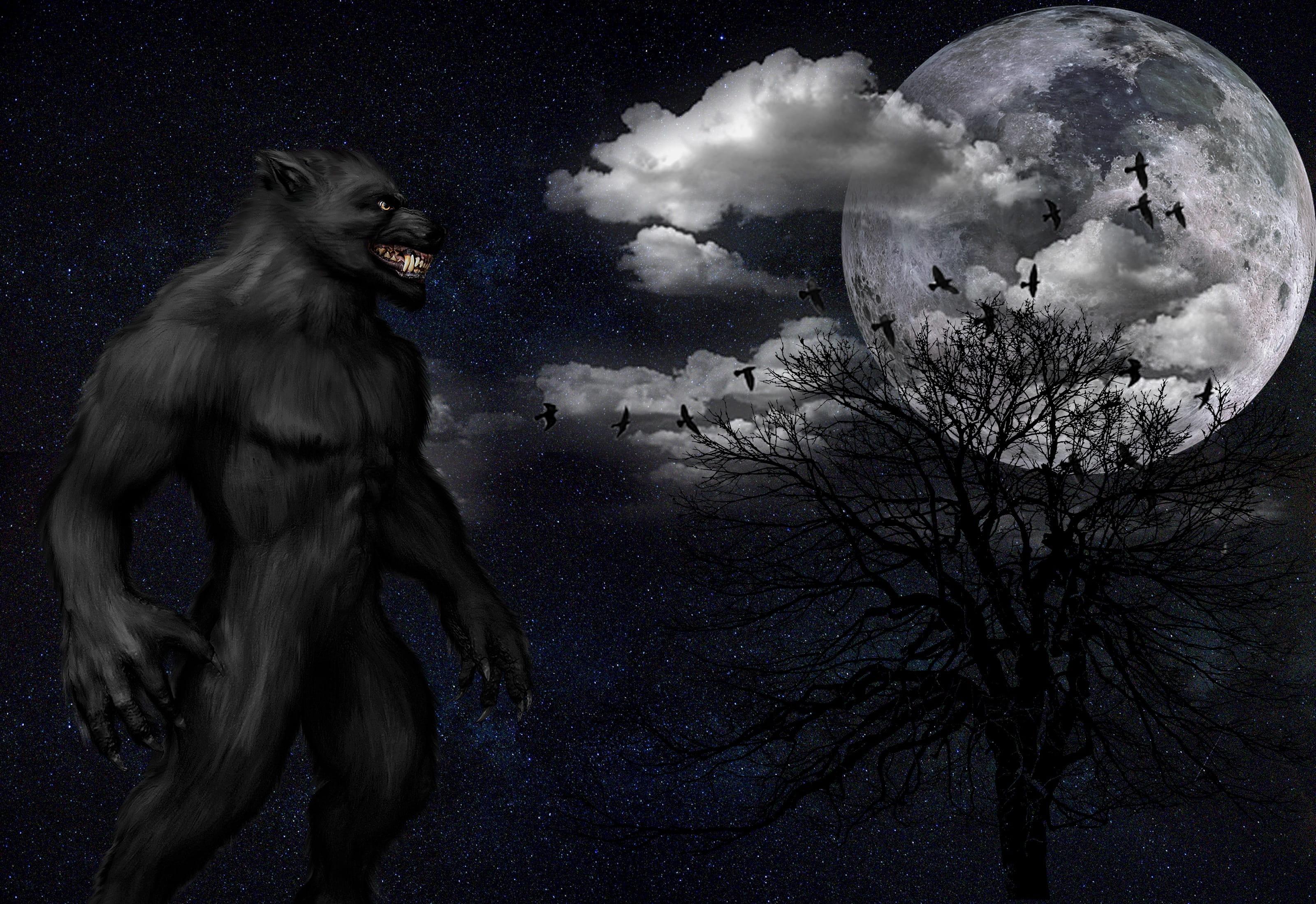 Power wolf's Fursona Avatar