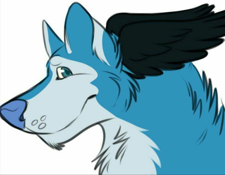 Ӂ̴ Neox 's Fursona Avatar